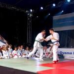 Randori Karate